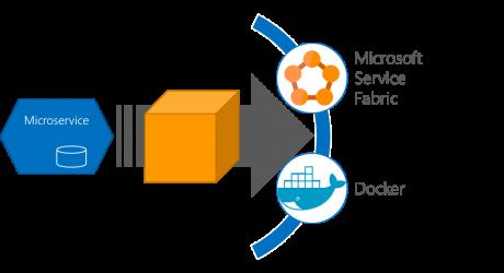 Microservice PaaS
