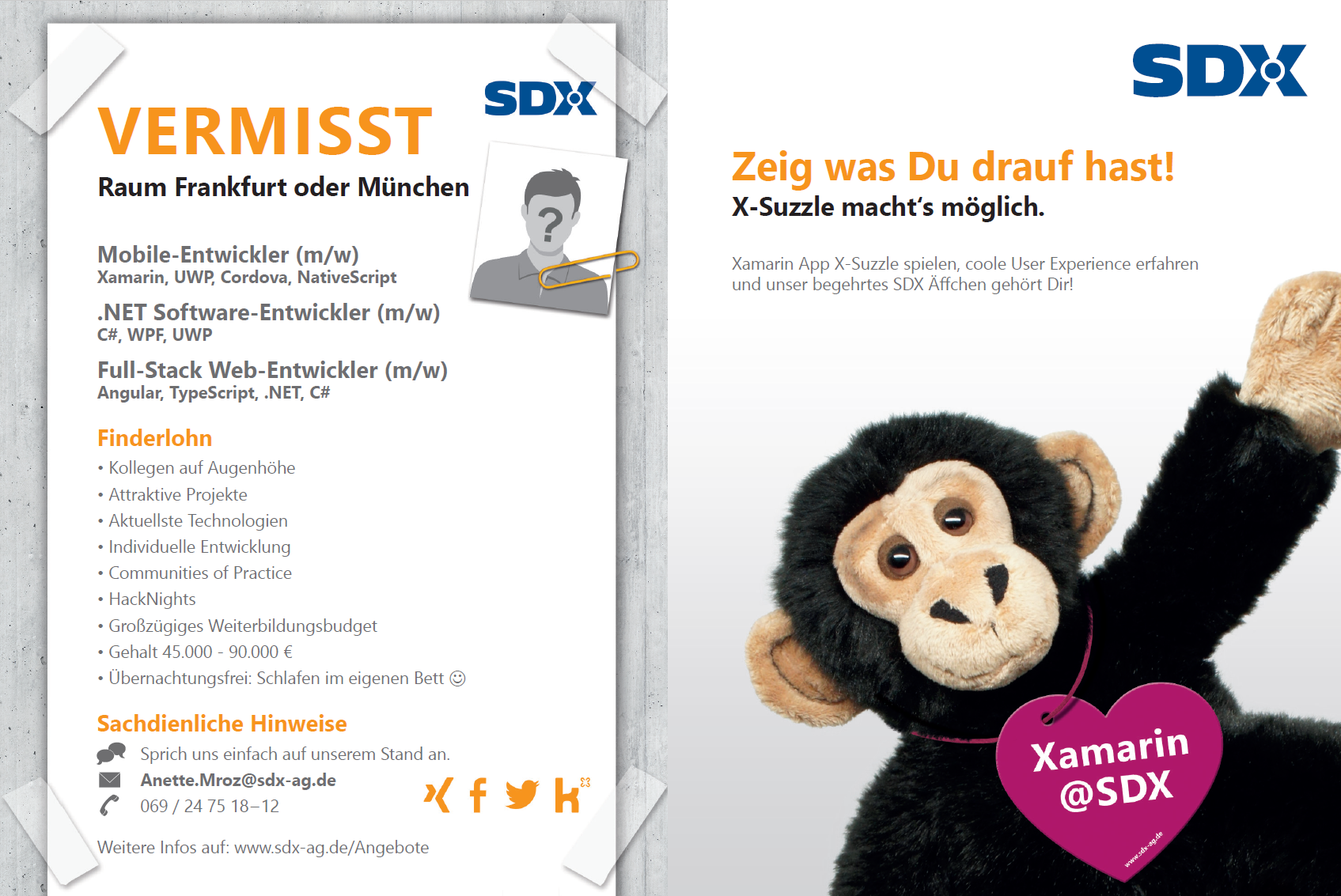 DDC Flyer SDX